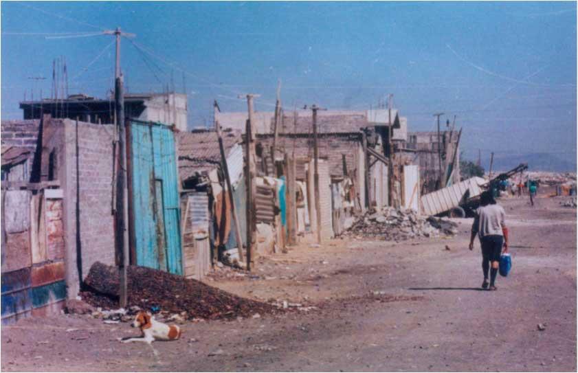 Slum-web